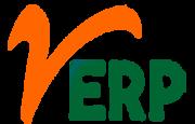 ERP consultant | vERP